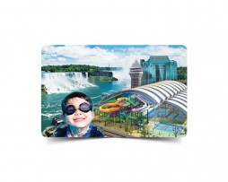 fallsview gift card
